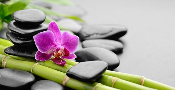 Belwellness Zen Atmosphere